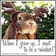 Butterscotch Carter, reindeer-in-training