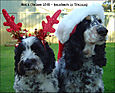 Max and Chelsea Love, reindeer-in-training