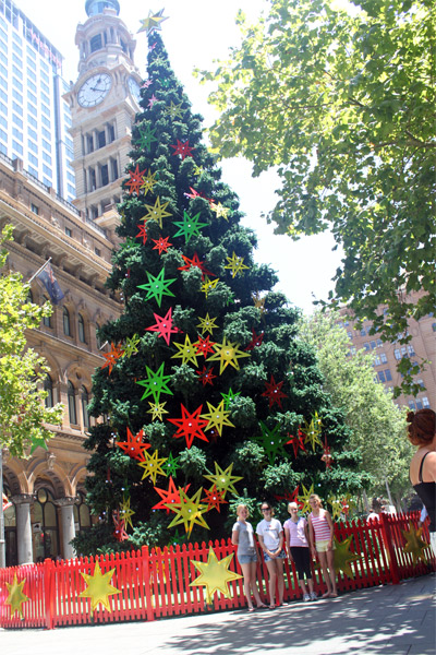 Martin-place-tree
