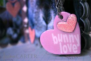 Bunnylove5