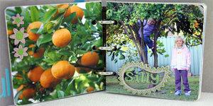 Minibook4fionacarter